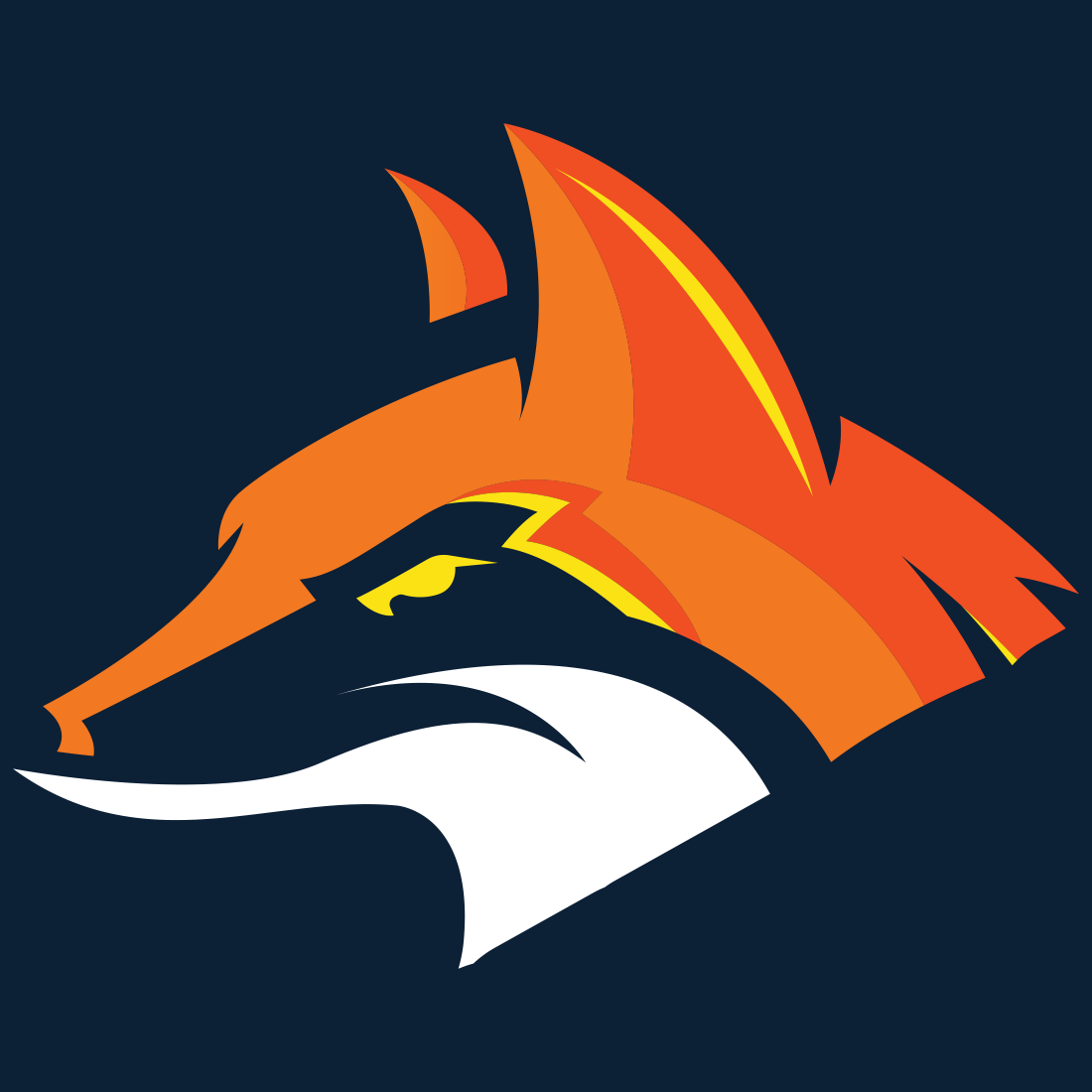 Fox Mobile Detail